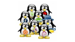 قسمت 4 : آموزش نصب لینوکس فدورا (Fedora) و سوزه (Suse)